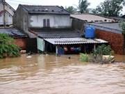 Le PM décide d'octroyer 2.000 tonnes de riz aux sinistrés de Binh Dinh