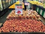 Créer une place digne des fruits du Vietnam sur le marché mondial