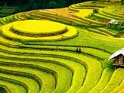 Le Vietnam parmi les dix destinations touristiques à visiter en 2017