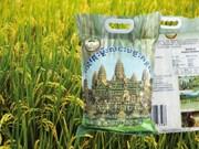 Près de 160 millions de dollars pour développer le secteur agricole au Cambodge