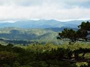 Lam Dong consacre 58 millions de dollars à la préservation de la biodiversité