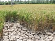 Changement climatique : plus de 130 milliards de dongs pour Tra Vinh
