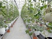 Aménagement de la zone agricole high-tech de Phu Yên