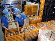 Phu Tho: Inauguration d'une usine de production d'œufs de poule bio