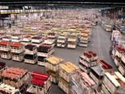 Le vice-PM Trinh Dinh Dung visite Aalsmeer, le plus grand marché aux fleurs des Pays-Bas