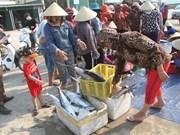 Formosa : un an après, la vie reprend son cours