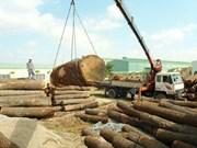 Exportations de bois: 7,5 milliards de dollars visés cette année