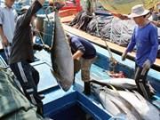 Le thon vietnamien exporté vers 79 pays