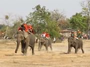 L'éléphant dans la tradition vietnamienne