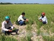 Le delta du Mékong doit relever les défis des changements climatiques