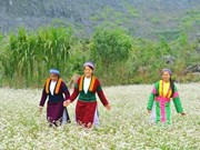 La province de Ha Giang attend l'essor de son tourisme