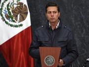 Enrique Pena Nieto : l'APEC est une bonne occasion pour intensifier la coopération Vietnam-Mexique