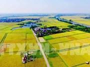 Coopération agricole entre la Belgique et le Vietnam