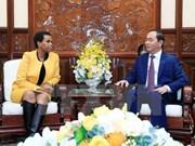 Promotion de la coopération intégrale Vietnam - Afrique du Sud