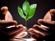 Agriculture : Lancement d'un concours de start-up pour les jeunes ruraux
