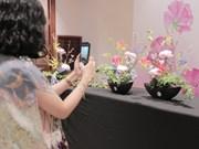 L'art floral japonais se dévoile à Hanoi