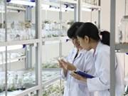 Hô Chi Minh-Ville : de nombreuses politiques en faveur des experts et scientifiques