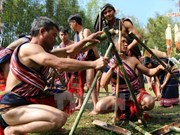 Le joyeux mois de mars sur les hauts plateaux du Tây Nguyên