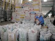Les Philippines vont importer 250.000 tonnes de riz du Vietnam ou de Thaïlande