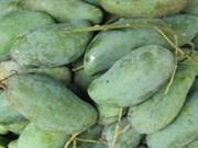 Fruits et légumes: la Thaïlande demeure le premier fournisseur du Vietnam