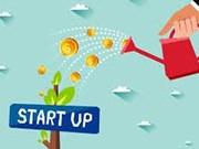 Mise en œuvre du projet d'assistance aux élèves et étudiants s'intéressant aux startups