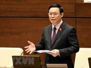 La séance de questions-réponses du vice-PM Vuong Dinh Hue