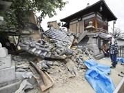 Aucun ressortissant vietnamien parmi les victimes d'un séisme au Japon