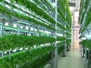 De nombreuses entreprises agricoles technologiquement avancées obtiennent des licences commerciales