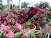 Promotion de l'attrait de l'investissement dans l'agriculture
