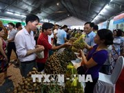 Ouverture de la Fête des longanes de Hung Yên 2018
