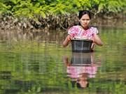 Inondations : L'ASEAN s'efforce d'aider les sinistrés au Myanmar