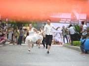 La folle course de 50 couples en mariage collectif