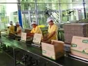Vinasoy figure parmi les 5 premiers fabricants de lait de soja dans le monde