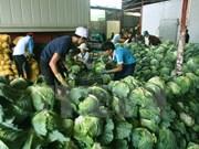 Les produits agricoles vietnamiens séduisent les entreprises chinoises