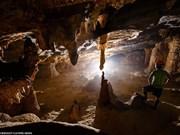 Découverte d'une nouvelle caverne à Phong Nha-Ke Bang
