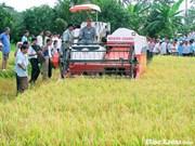 Lam Dong : 175 milliards de dôngs pour l'édification de la Nouvelle ruralité