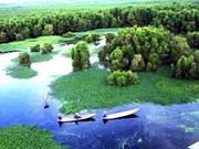 Améliorer la gouvernance environnementale au Vietnam