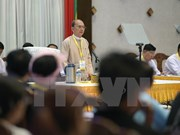 Le Myanmar créée un comité mixte de dialogue politique