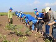 Quang Nam : bilan des modèles d'adaptation aux changements climatiques