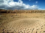 Le Vietnam conjugue les efforts communs pour faire face aux changements climatiques