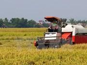 Développement de la chaîne de valeur agricole de la sub-région du Mékong