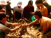 De nombreux produits vietnamiens rejoignent la chaîne d'approvisionnement mondiale