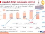 [Infographie] Import et déficit commercial en 2015