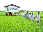 Syngenta ne cesse de soutenir le Vietnam pour un développement durable de l'agriculture