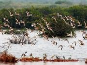 Comment protéger les parcs nationaux et réserves naturelles