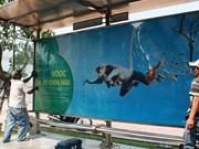 Dà Nang : une campagne de protection des doucs sur les abribus