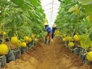 L'Australie partage ses expériences de développement agricole avec le Vietnam
