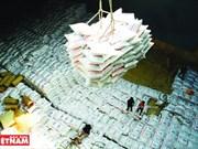 Plus de 1,8 million de tonnes de riz exportées depuis janvier