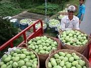 Les Sud-Coréens friands de fruits du Vietnam