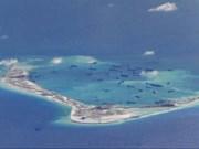 La Chine dénoncée pour destruction de l'écosystème en Mer Orientale